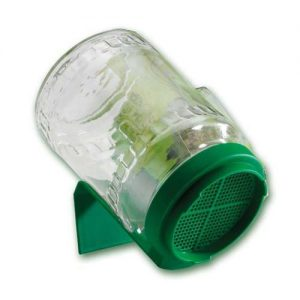 Bio Snacky Original Glass Germinator